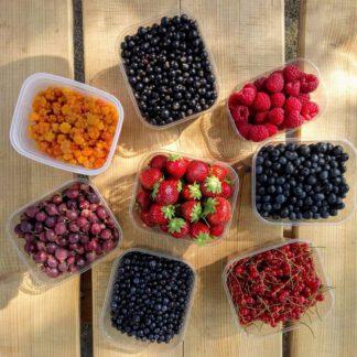 Bär & Frukt / Marjat & Hedelmät