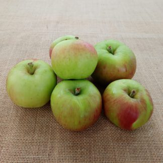 Frukt/ Hedelmä