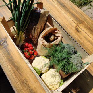 Grönsaker/ Vihannekset